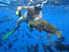 pesca sub