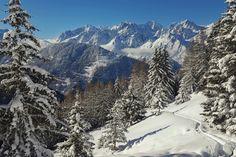 Soleil, neige et nature.