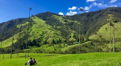 travel to salento hike the valle de cocora in colombia