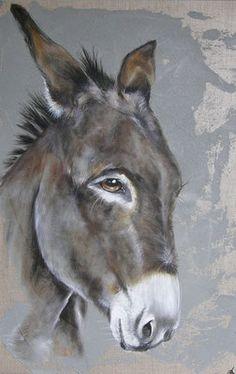 mon âne si doux !