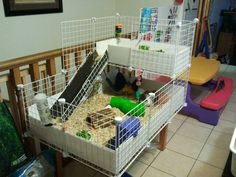 A C (cubes & cloroplast) guinea pig cage built by my husband and myself. :-)