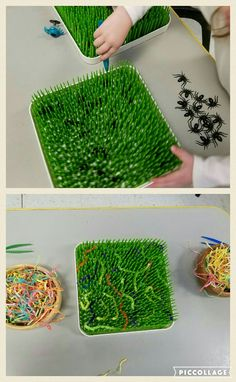 Using tweezers to pull spiders out of the grass (Boon drying rack) or use pipe cleaners for worms
