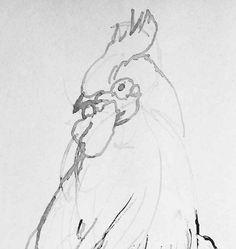 Gallo (Drawing) https://www.facebook.com/ElEternoproblema/