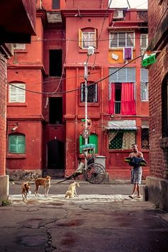 Morning sun fills up a street in Bowbazar just before the elections with the Communists trying to regain lost glory, Kolkata