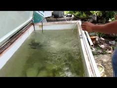 In this video I show you how to turn an old freezer into a bait tank. A freezer makes a great bait tank because it is insulated and will help to keep the wat. Diy Fishing Bait, Best Fishing Rods, Fishing Life, Fly Fishing, Fishing 101, Pike Fishing, Bait Tank, Live Bait, Fish Farming