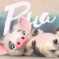 Pua ♥ Disney's Moana Plus Disney Pixar, Walt Disney, Disney Sidekicks, Disney Animation, Disney And Dreamworks, Disney Magic, Disney Art, Disney Characters, Disney Dream