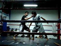 Filipino martial arts Kali : One Technique, Any Weapon
