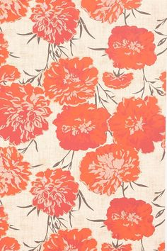 urban outfitter poppies wallpaper