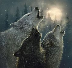 .Wolves howling at the moon