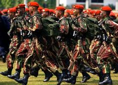 indonesian military | ... to Resume Cooperation with Indonesian Special Forces (Kopassus