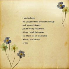 pablo neruda love poems in english - Bing Images Pablo Neruda, Love Is Comic, Pretty Words, Beautiful Words, Poetry Quotes, Me Quotes, Crush Quotes, Flower Poem, Birth Flower