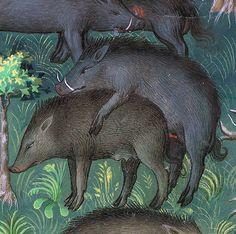Gaston Phoebus, Le Livre de la chasse, Paris ca. 1407 (NY, Morgan, MS M. Zoo 2, Medieval Life, Medieval Art, Medieval Manuscript, Illuminated Manuscript, In Medias Res, Medieval Home Decor, Old Best Friends, Medieval Paintings