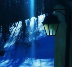 pura magia..... Monte Ventasso Foto di Katyb (Reggio Emilia)