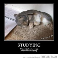 The leading cause of napping.....