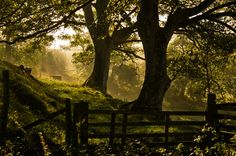 Wales (by Pixellie)