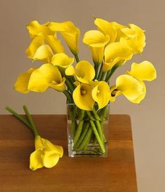 Mini Calla Lilies are a beautiful choice for centerpieces - this arrangement is a great example of simple elegance. Mini Calla Lilies come in a variety of beautiful colors year-round and look stunning in bouquets, centerpieces, and other wedding flowers! Shop now at GrowersBox.com!