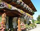 Ferienwohnungen Haus Seebach