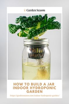 How to Build A Jar Indoor Hydroponic Garden |   Materials You'll Need  • 5 one-gallon jars with lids • Nutrient solution • 5 two-inch net cups • Seeds • 1 1/2 inches Rockwool cubes • Hydroton