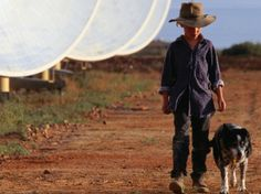 Boy with Dog Walking Past Solar Energy Dishes, New South Wales, Australia