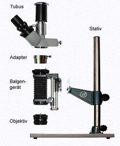 Makroskop Komponenten