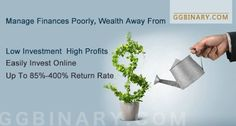 Binary Options and Forex Investment Guide : Manage Finances Poorly, Wealth Away From