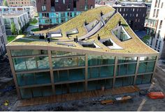 Green roof with cut out terraces