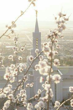 My pretty Bountiful Temple!!!