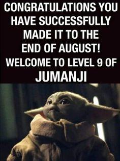 Funny Picture Quotes, Funny Quotes, Funny Pictures, Yoda Meme, Star Wars Poster, The End, Lol So True, Stupid Memes, Cute Funny Animals