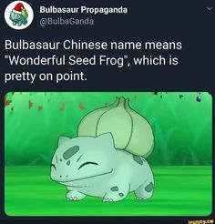 """Bulbasaur Chinese name means """"Wonderful Seed Frog"""", which is pretty on point. Play Pokemon, Pokemon Memes, Pokemon Funny, Pokemon Stuff, Gotta Catch Them All, Chinese Name, Fanart, Bulbasaur, Pokemon Pictures"""