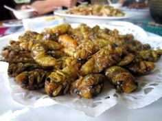 When the fish are all gone: Edible insects for food security. entomophagy entomophagy etsy-finds
