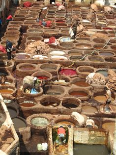 Tannery in Fez Morocco and took the tour. It was wonderful and I'll never forget the tannery smell
