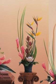 birds of paradise, ginger, protea-exotic flowers