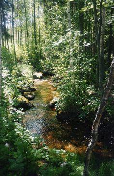 Photographs, River, Nature, Outdoor, Outdoors, Naturaleza, Photos, Outdoor Games, Nature Illustration
