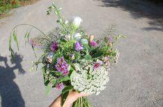 "Wildflower Bouquet featuring Queen Anne's Lace, Campanula, Valerian, Delphinium, Larkspur, Verbena bonariensis, Gomphrena ""fireworks"", Mints, Fennel foliage, Poppy pods, Parsley heads, Coriander, grasses."