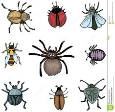 bugs-insects-set-hand-drawn-57979421.jpg (1335×1300)