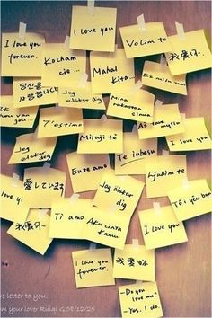"""Learn how to say """"I love you,"""" in ten different languages. <3"""