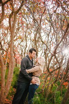 Wilton Photography | Engagement Photos