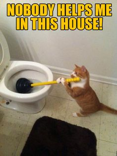 Nobody helps me to clean this stuff #cleaning #humor https://www.kleengaroo.com/