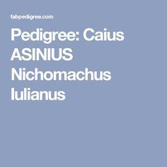 Pedigree: Caius ASINIUS Nichomachus Iulianus