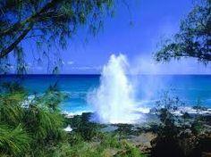 #Hawaii #Yoga Teacher Training  http://www.yogateachertrainingyogacara.com/hawaii-yoga-teacher-training/