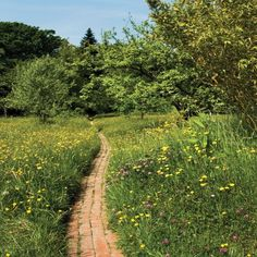 Nature Aesthetic, Summer Aesthetic, Mother Nature, Countryside, Paths, Greenery, Beautiful Places, Cottage, Exterior