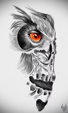 Orange-eyed owl and skull tattoo design Orange-eyed owl and skull tattoo design. - Orange-eyed owl and skull tattoo design Orange-eyed owl and skull tattoo design This image has - Owl Skull Tattoos, Animal Tattoos, Body Art Tattoos, Tattoo Drawings, Sleeve Tattoos, Tattoo Owl, Tatoos, Maori Tattoos, Owl Tattoo Design