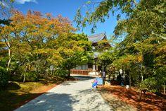 京都日和 〜 Kyoto Biyori ~ : ついに一般公開!青蓮院、青龍殿の大舞台♪
