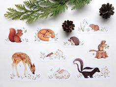 Woodland Sticker Set by Nina Stajner : 9 Cute Animal stickers