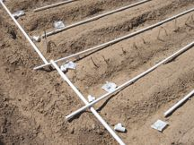 How to Build a Drip Irrigation System For Under $100 A drip irrigation system can save you time, money and conserve water. This drip irrigation system can be turned on and left to do its job withou…