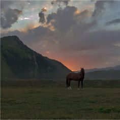 At Bashy, Naryn region #Kyrgyzstan #nature
