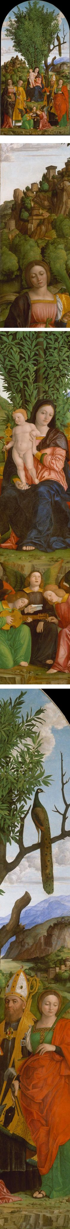 Eye Candy for Today: Girolamo dai Libri's Madonna and Child with Saints.  Girolamo dai Libri (1474/1475 – July 2, 1555) was an Italian illuminator of manuscripts and painter of altarpieces, working in an early-Renaissance style.He was born and mainly active in Verona. His father was Francesco dai Libri, and was so named because he was an illuminator of books.