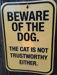 Akta dig f�r hunden ...