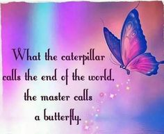 Butterfly butterflies life quotes, butterfly poems и inspirational quotes. Positive Quotes, Motivational Quotes, Inspirational Quotes, Inspiring Sayings, Butterfly Poems, Butterfly Place, Butterfly Tattoo Meaning, Butterfly Kisses, Butterfly Art