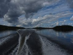 Puumala elokuu 2014
